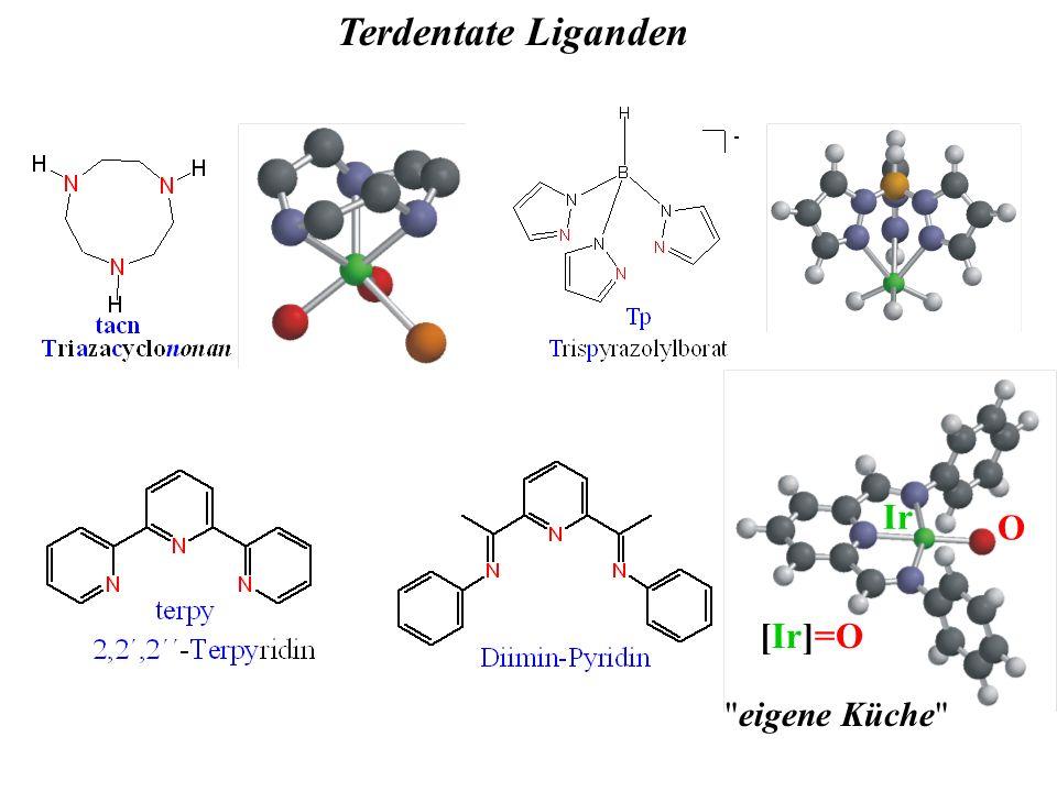 Terdentate Liganden eigene Küche [Ir]=O Ir O